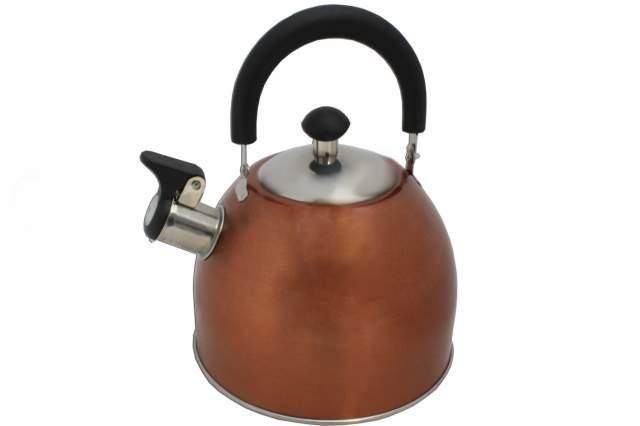 wasserkessel bronze aus edelstahl mit pfeife und deckel 2 5 liter wasser kessel. Black Bedroom Furniture Sets. Home Design Ideas