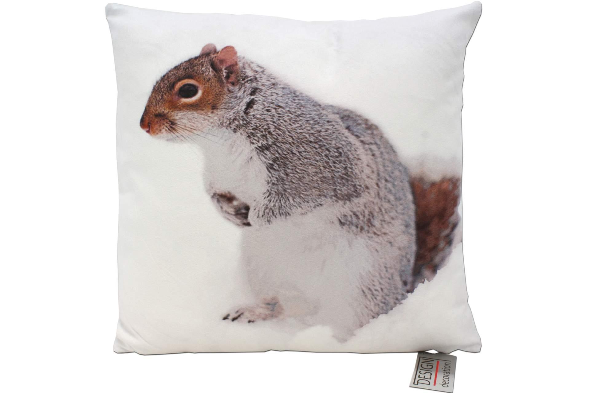 dekokissen fotoprint eichh rnchen 40 x 40 cm herbst tier motiv sofa zier kissen ebay. Black Bedroom Furniture Sets. Home Design Ideas